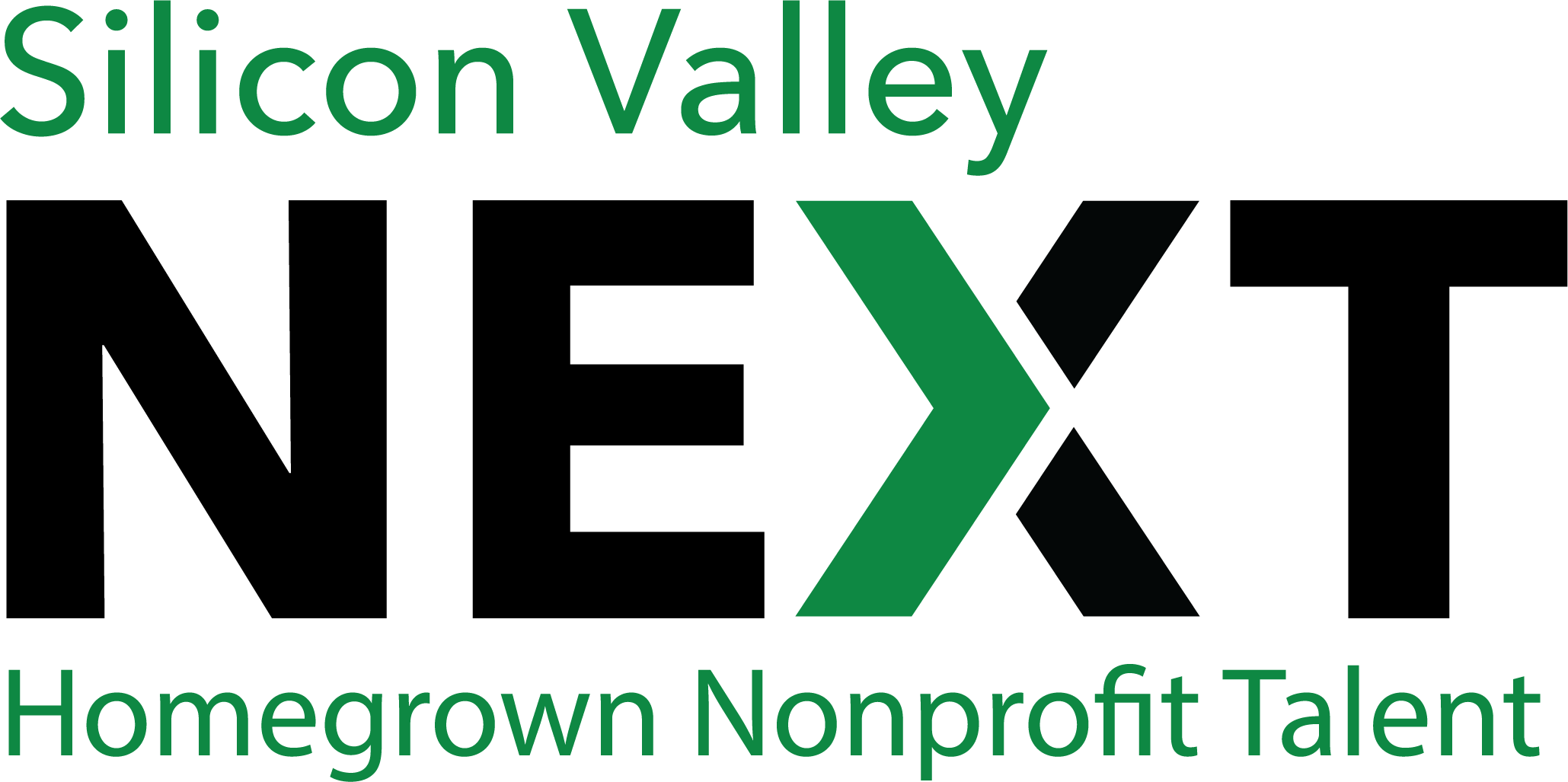 Silicon Valley Next Logo